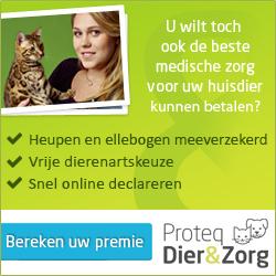 dierenverzekering_zakelijk